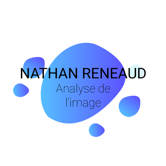 Nathan Reneaud, intervenant en analyse d'image
